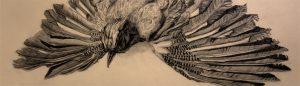 Anja Brinkmann-Zeichnungen-Vogel