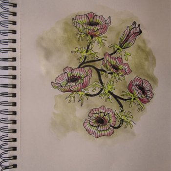Zeichnung-Anja Brinkmann-Mohn