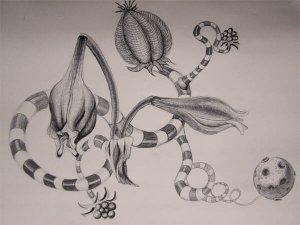 Zeichnung-Swirl 1-Anja Brinkmann
