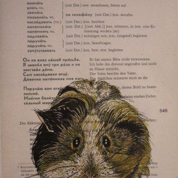 Zeichnung-guinea pig-Anja Brinkmann