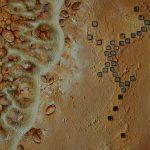 Malerei-Die Muschelsucherin-Öl auf Leinwand-Anja Brinkmann