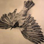 Vogel-Zeichnung-Anja Brinkmann